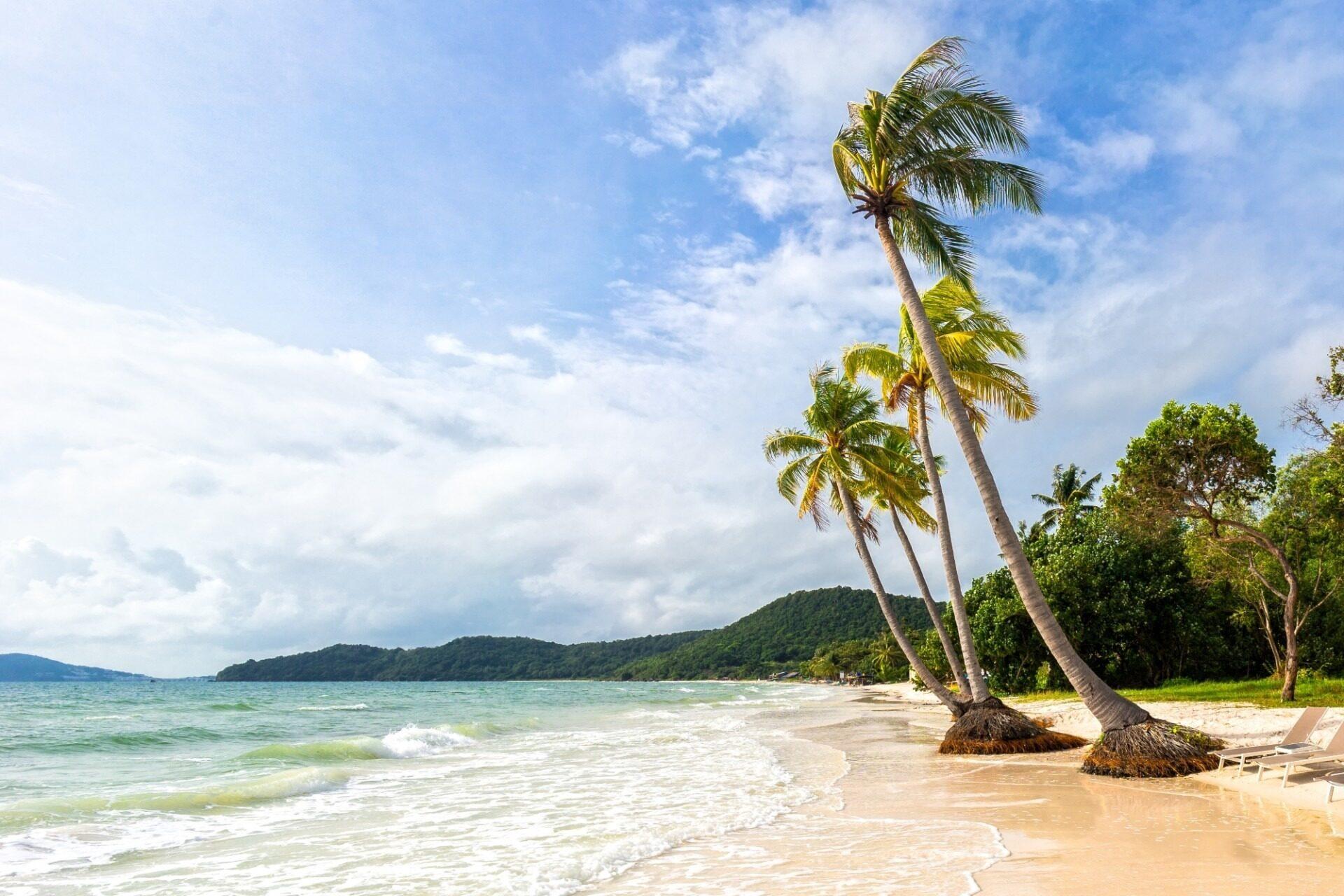 Tropical palms on beautiful Bai Sao beach