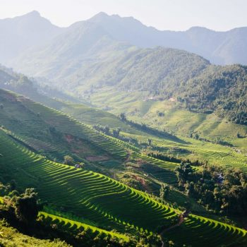 Beautiful rice plateaus in Sapa mountains